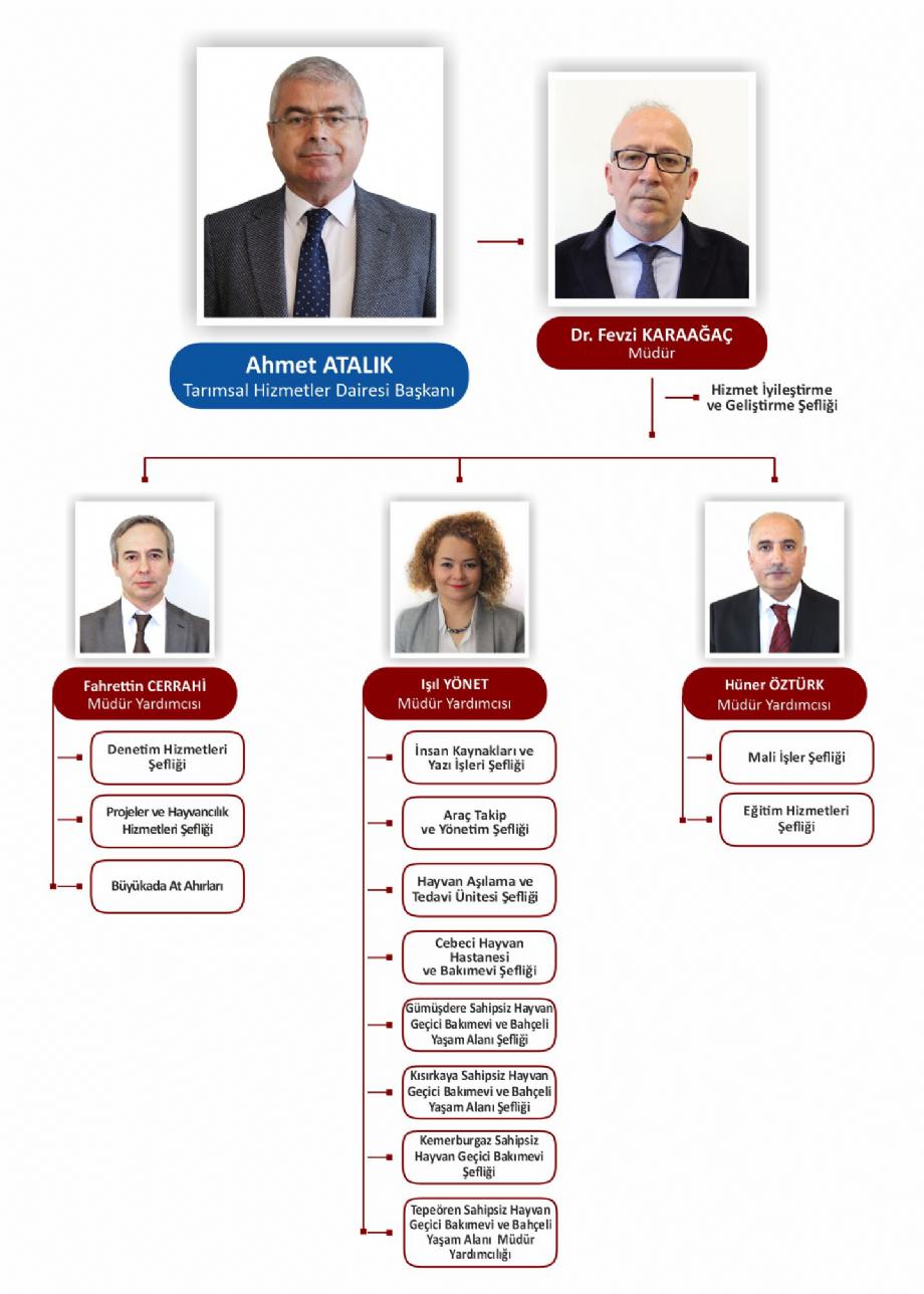 Yönetim Şeması - VETERİNER HİZMETLERİ MÜDÜRLÜĞÜ